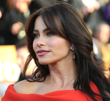 Sofia Vergara Cosmetic Surgery