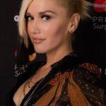Gwen Stefani Surgery Transformation