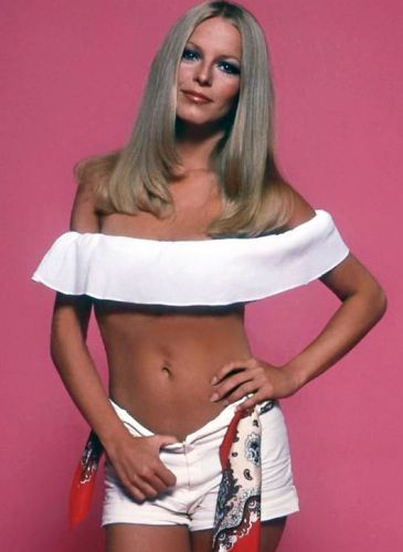 Cheryl Ladd Before Plastic Surgery